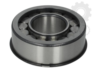 Rulment varf pinion atac diferential punte spate P1370 Renault (poz.12)